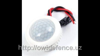 Двухпроводный датчик движения для включения света